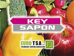 KEY SAPON